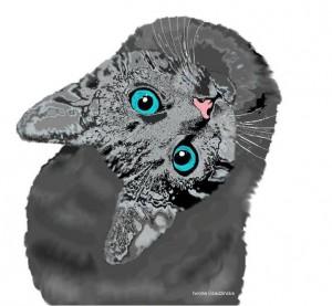 Kot by Iwona Osadzińska
