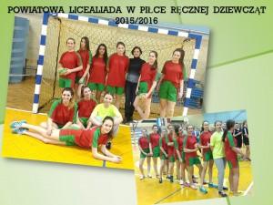 pow.lic 2015-2016