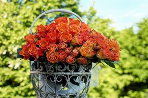 roses-1417473_1280