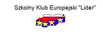 """Szkolny Klub Europejski """"Lider"""" wyniki ankiety profrekwencyjnej"""